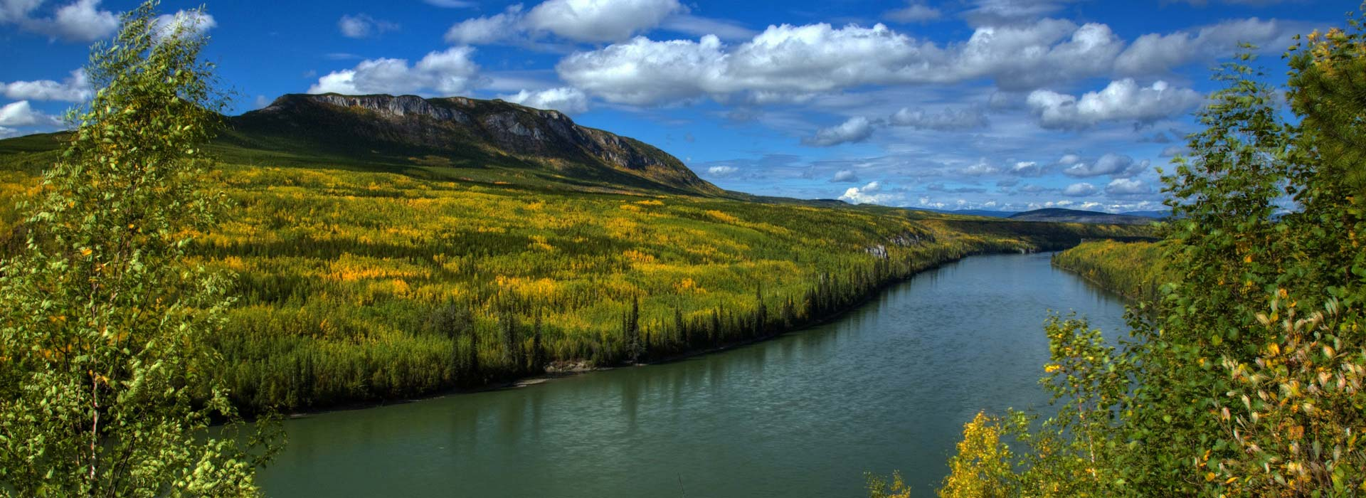view of the mackenzie river