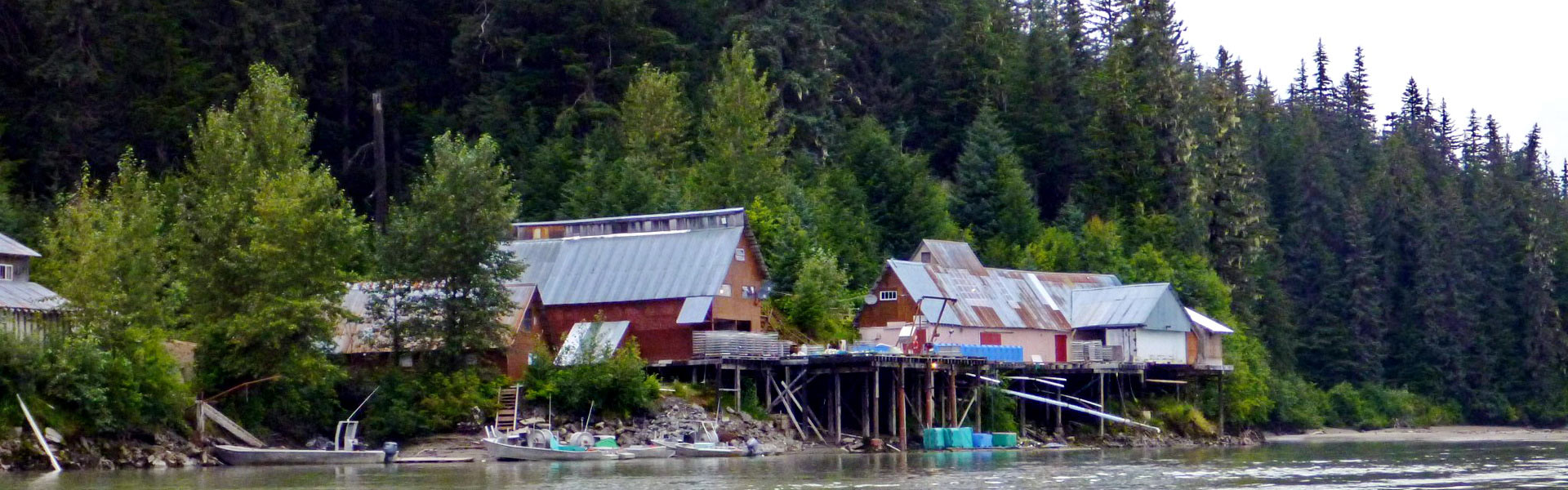 Great Glacier Salmon Plant and Camp