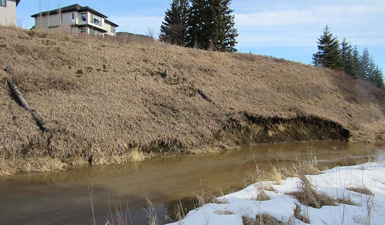 Blackmud Creek Bioengineering