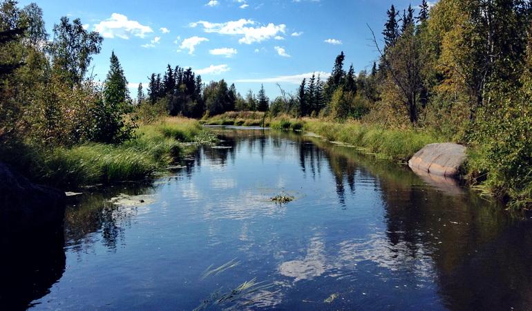 Great Slave Lake Nutrient Risk Assessment