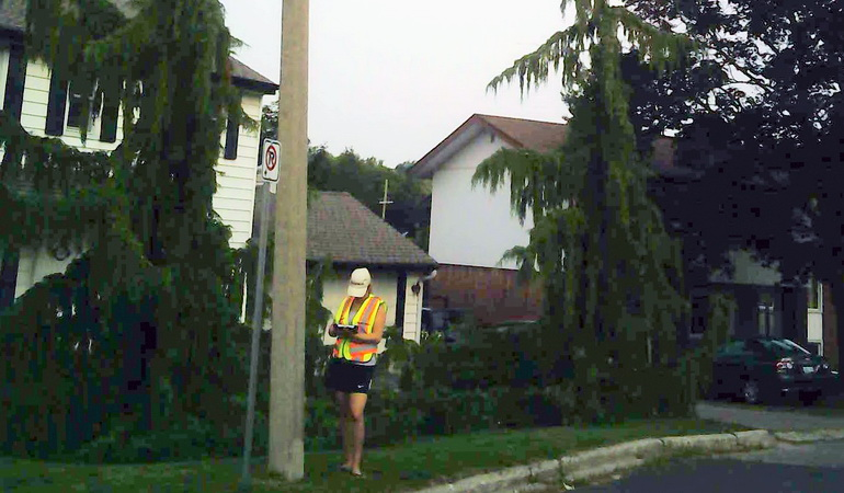 Streetlight Condition Assessment