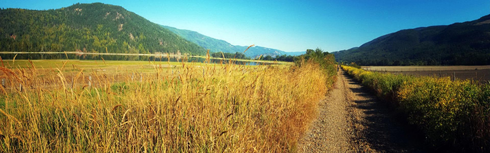Sicamous to Armstrong Rail Trail Agricultural Component