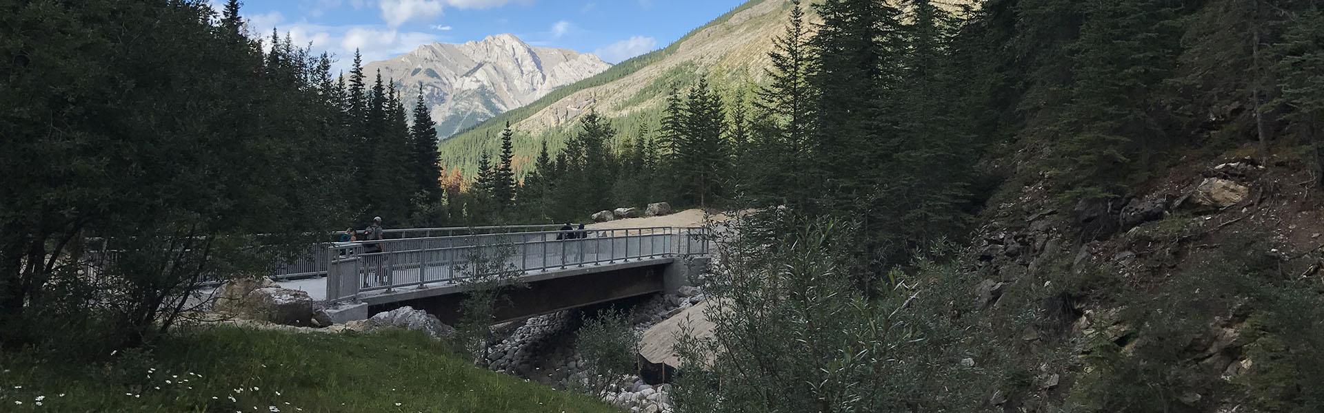Sulpher_creek_bridge_banner