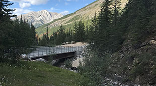 Sulpher_creek_bridge_thumb