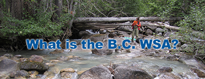 What is the B.C. WSA?